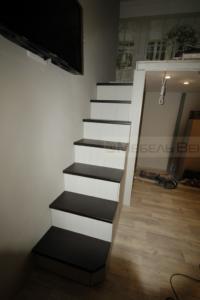 50-2 лестница-шкаф